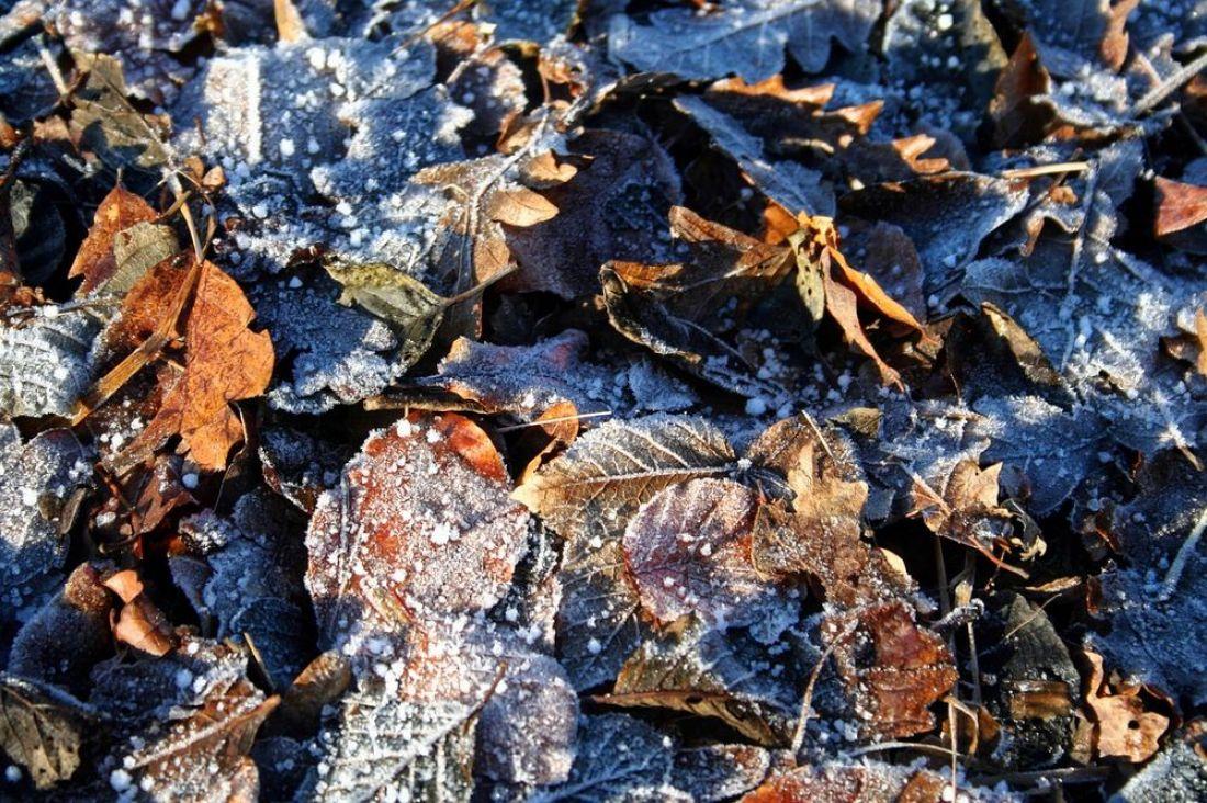 В Пензе прогноз погоды обещает на понедельник заморозки