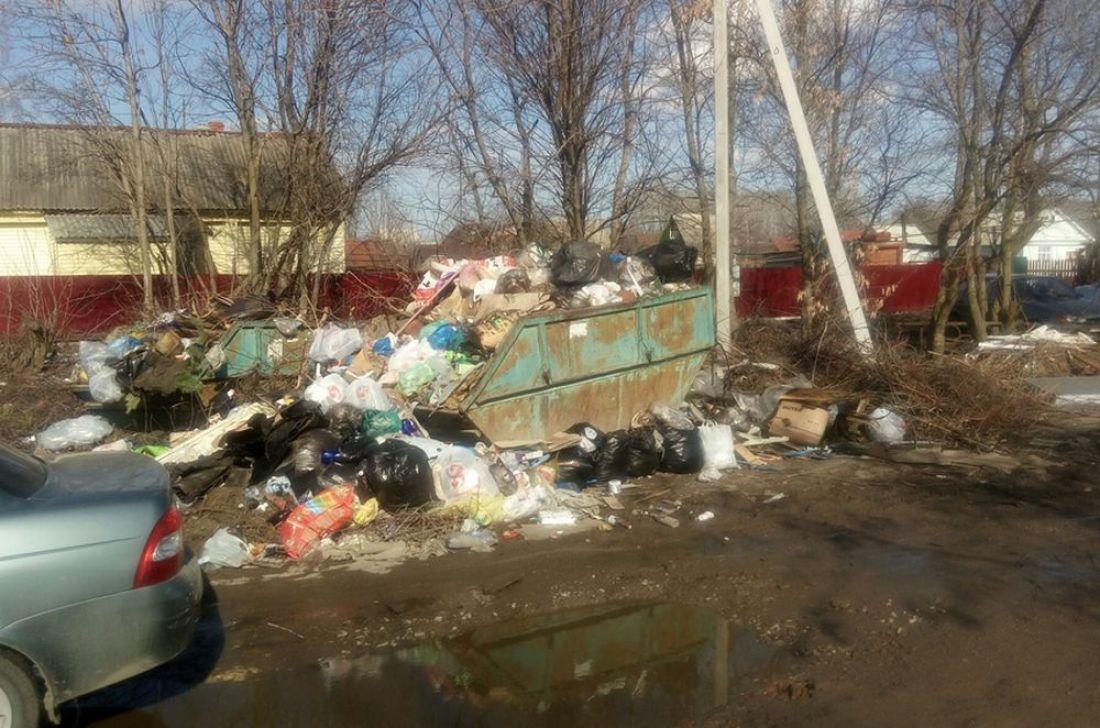 В Пензенской области город Сердобск утопает в мусоре. Фото